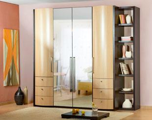 Шкаф платяной с зеркалом