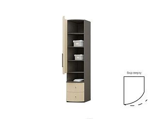 Одностворчатый шкаф с радиусными ламинированными фасадом и ящиками TGP12QCH